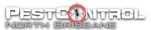 Pest Control North Brisbane
