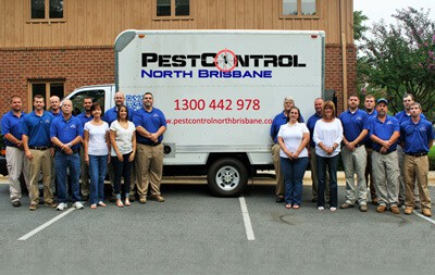 Our Pest Control Team